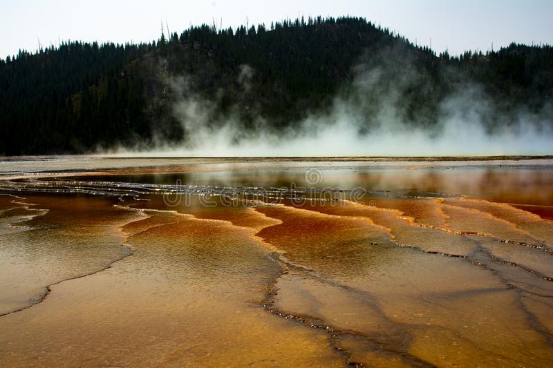Yellowstone nationalparkGeyser 1 royaltyfri fotografi