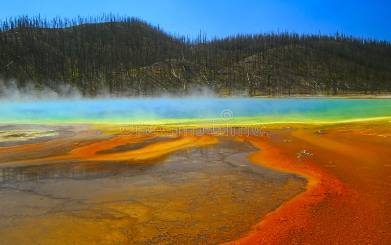 Yellowstone no.2 stock foto
