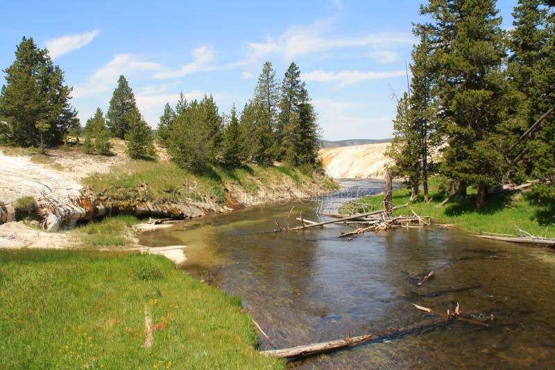 Yellowstone park narodowy fotografia royalty free