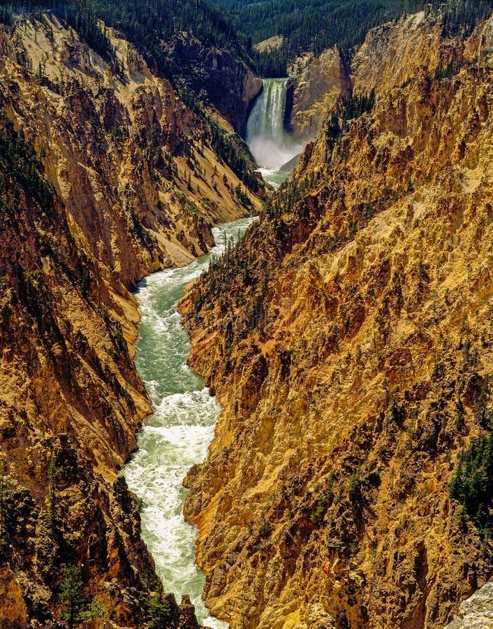 yellowstone park narodowy, Wyoming obraz stock