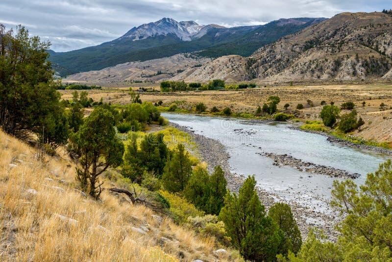 Yellowstone River i Montana royaltyfri bild