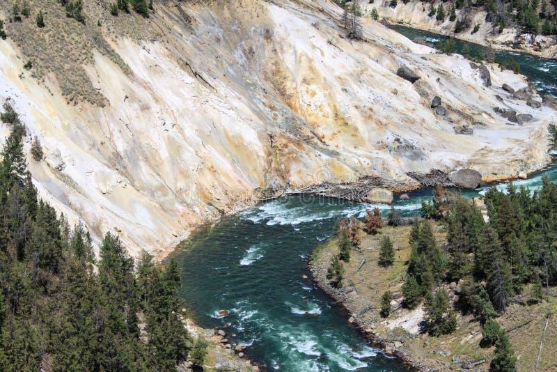 Yellowstone River landskap i den Yellowstone nationalparken royaltyfria foton