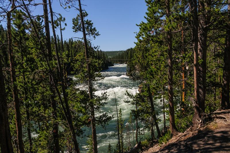 Yellowstone rzeka fotografia royalty free