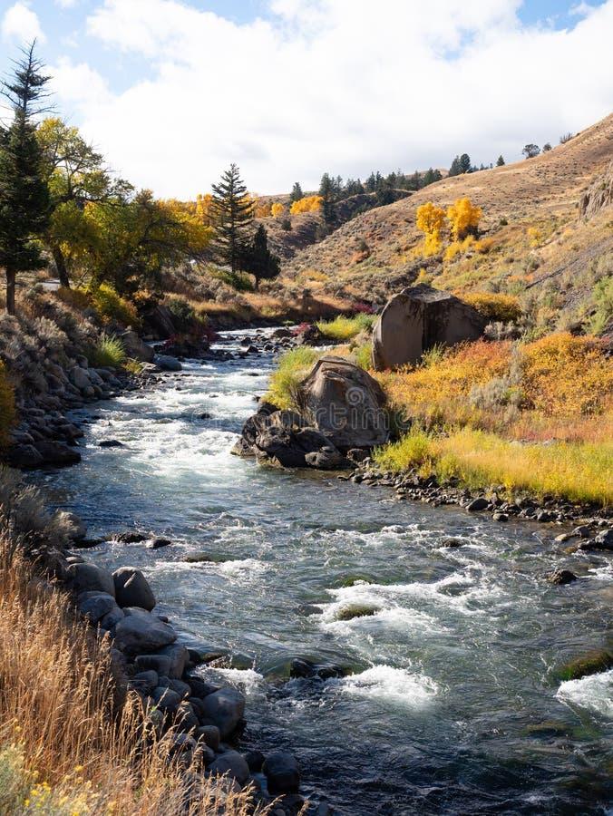 Yellowstone rzeka z jesieni roślinnością w Yellowstone parku narodowym fotografia stock