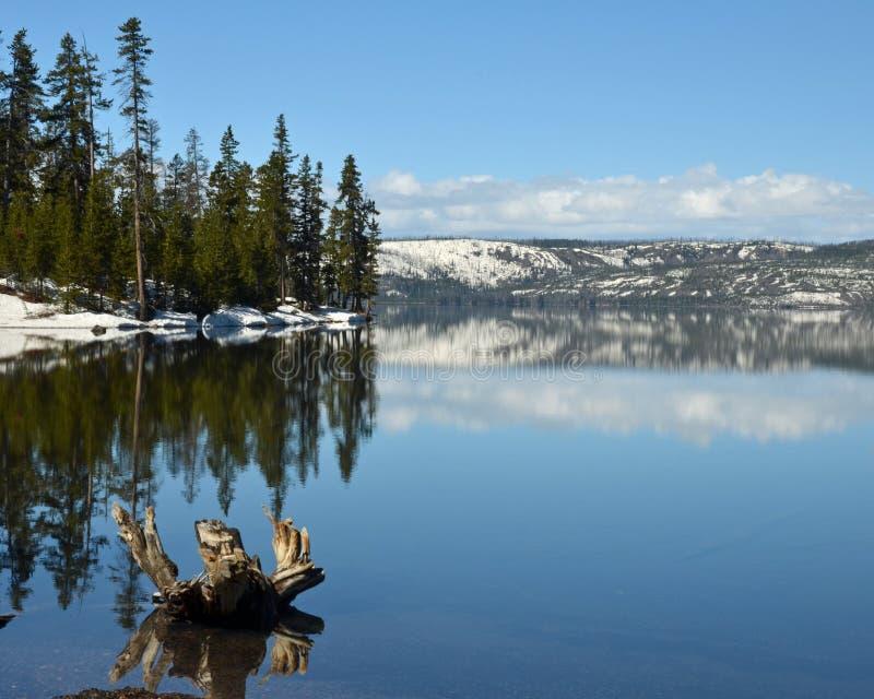 Yellowstone sjö royaltyfria foton
