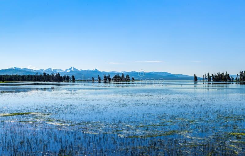 Yellowstone sjö på den Yellowstone nationalparken arkivbild
