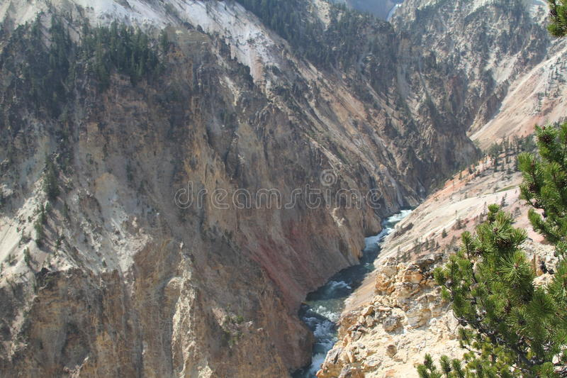 Yellowstone storslaget Tetons Grand Canyon arkivfoton