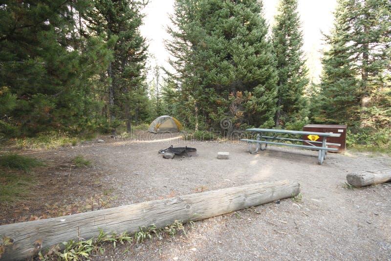 Yellowstone tusen dollar Tetons fotografering för bildbyråer