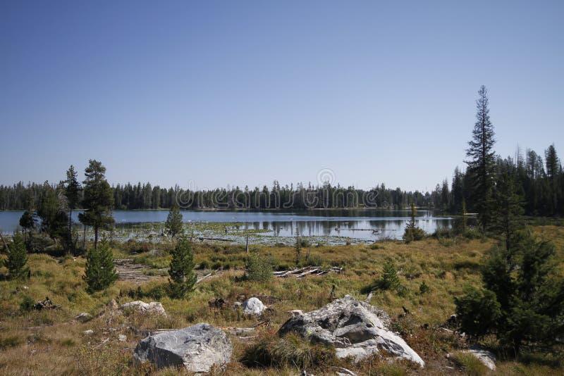 Yellowstone tusen dollar Tetons royaltyfri fotografi
