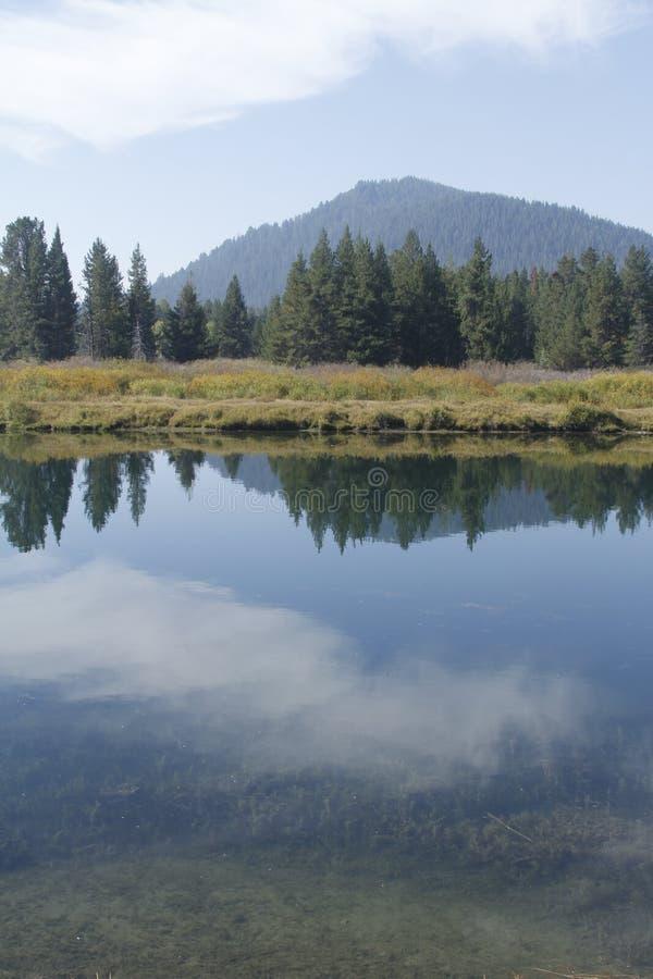Yellowstone tusen dollar Tetons royaltyfria bilder