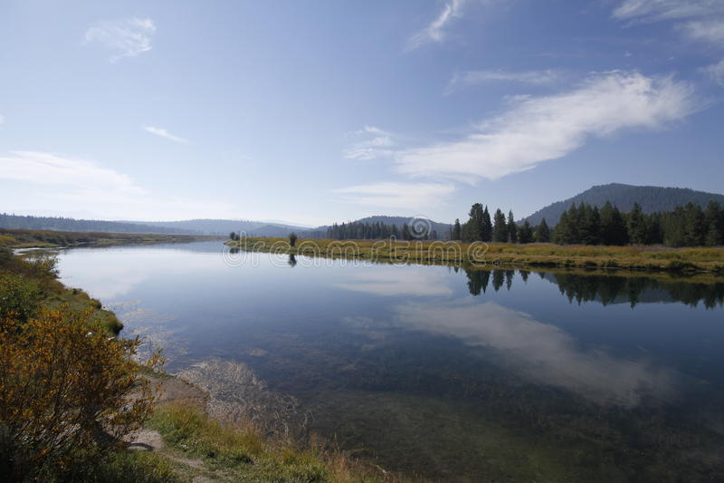 Yellowstone tusen dollar Tetons royaltyfri bild