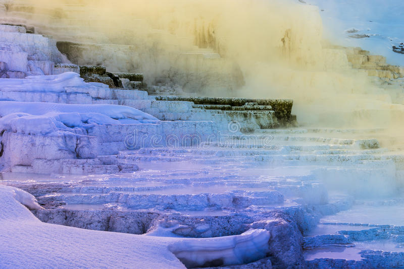 Yellowstone vinterlandskap royaltyfri bild
