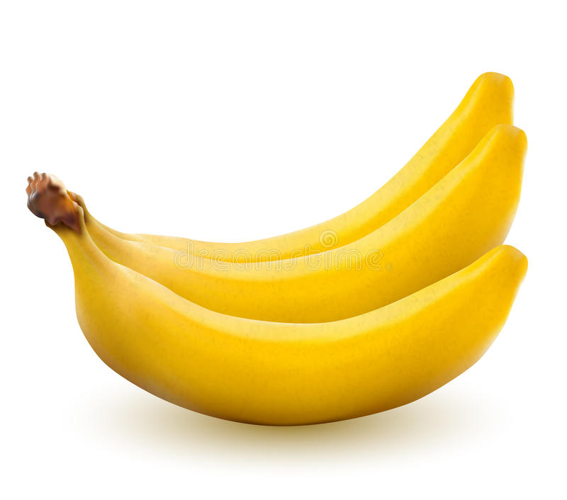 Yelow bananas. Bananas isolated on white, vector illustration royalty free illustration