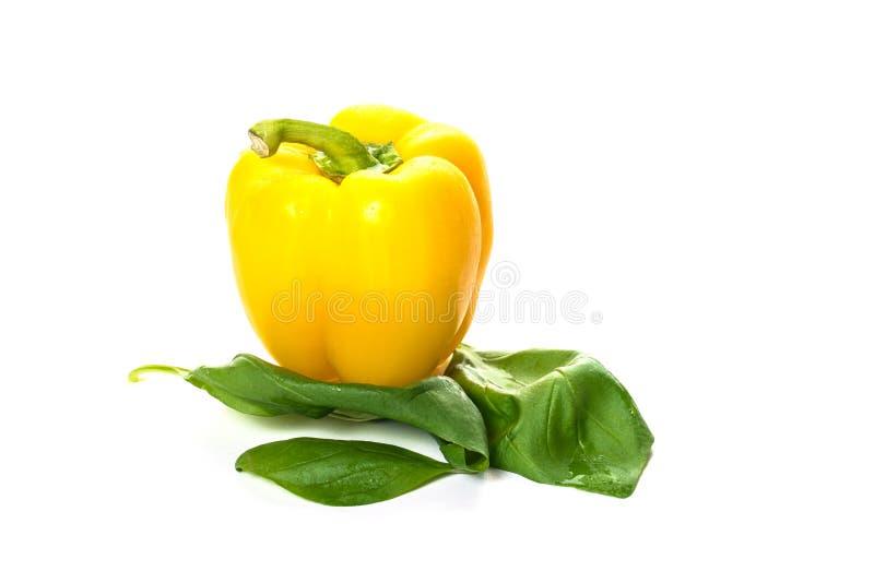Yelow-Paprika auf Basilikumblättern stockbilder