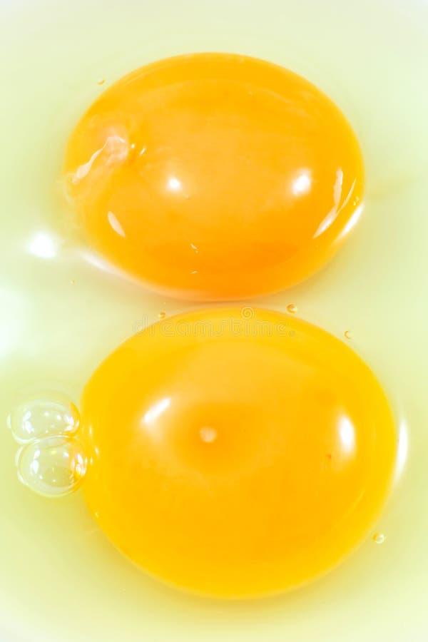 Yema de huevo con la albúmina foto de archivo