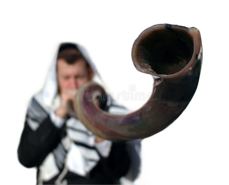 Yemenite shofar stock image