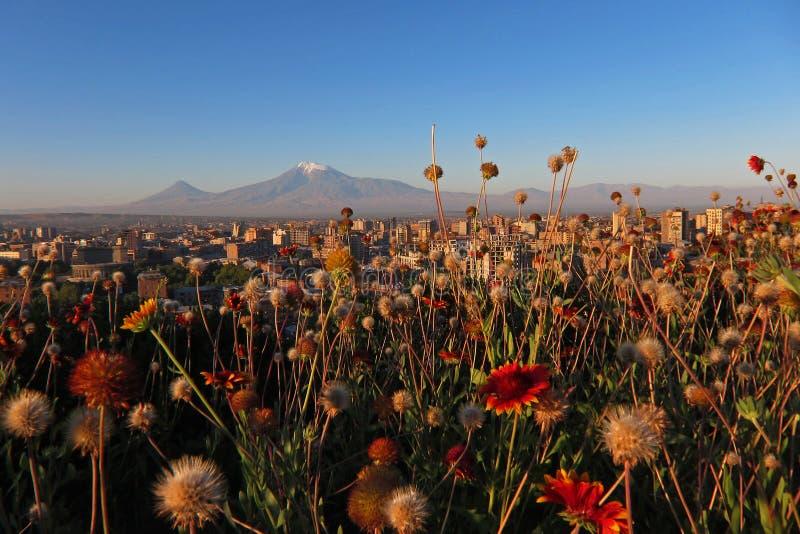 Yerevan con Ararat fotografia stock libera da diritti