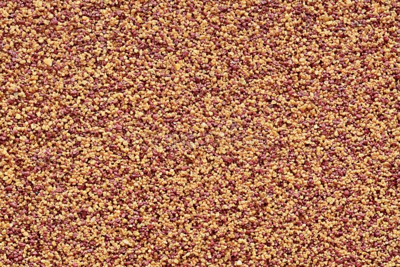 Yeso decorativo áspero marrón-amarillo de la pared del modelo tosco fotos de archivo