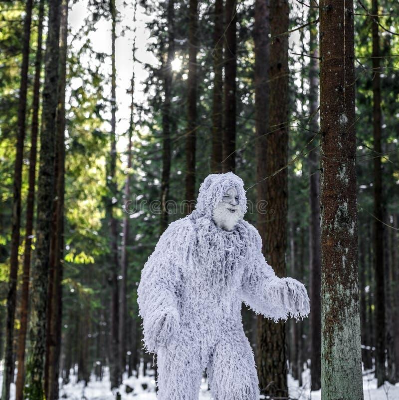Yetimärchencharakter Winterwaldphantasiefoto im im Freien lizenzfreie stockfotografie
