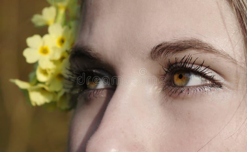 Download Yeux émotifs photo stock. Image du fille, vert, yeux, fleur - 740522