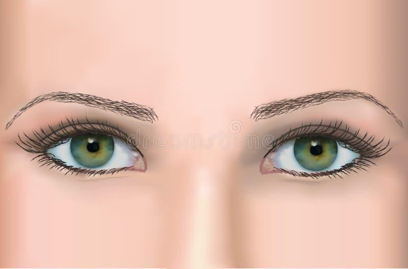 yeux images libres de droits