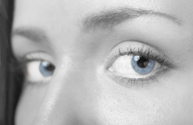 Yeux photographie stock