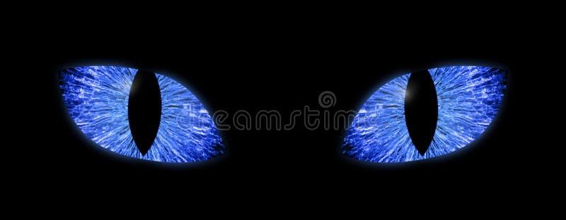 Yeux bleus lumineux avec les élèves verticaux illustration stock