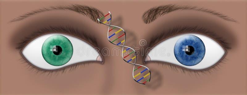 YEUX D'ADN illustration libre de droits