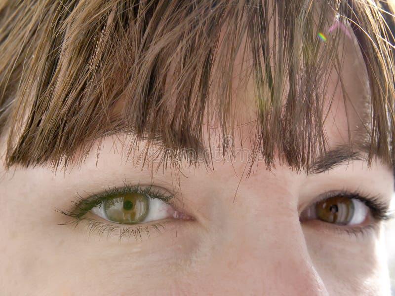 Yeux de brun de regard étroit d'une jeune fille, plan rapproché photos stock