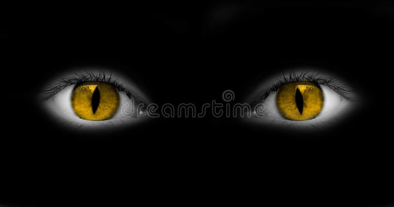 Download Yeux De Catwoman D'isolement Sur Le Noir Photo stock - Image du foncé, regard: 45370168
