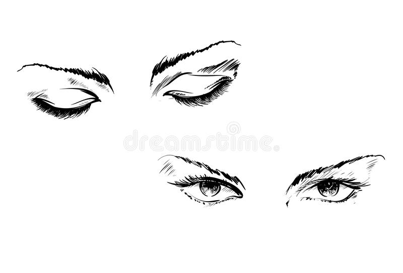 Yeux de dessin de main sur un fond blanc illustration stock
