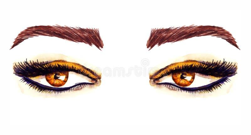 Yeux en forme d'amande orientaux de Brown avec le maquillage, fards à paupières bruns d'or, contour noir, mascara, sourcils bruns illustration libre de droits