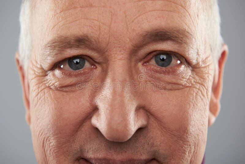 Yeux gris d'homme adulte semblant sages et calmes photo libre de droits