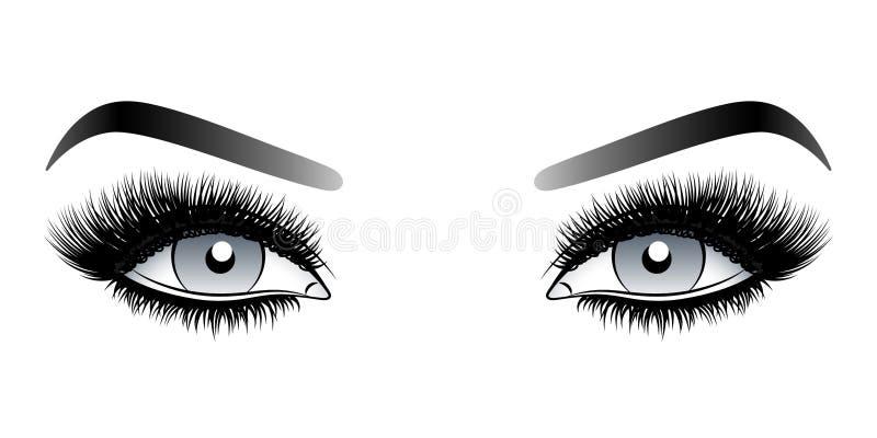 Yeux gris de femme avec de longues mèches fausses avec des sourcils illustration libre de droits