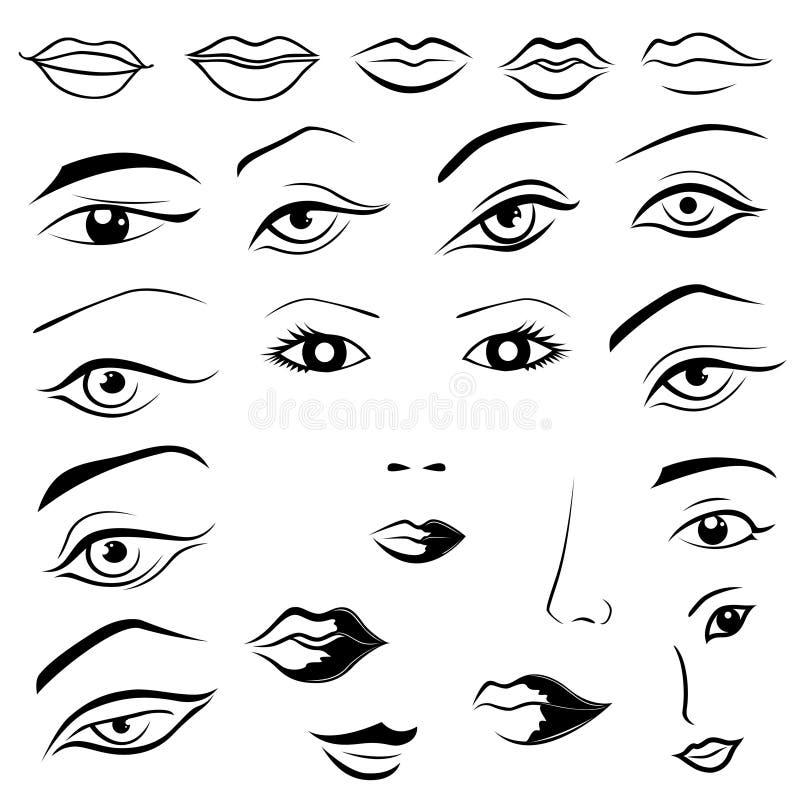 Yeux humains, lèvres, sourcils et nez illustration de vecteur
