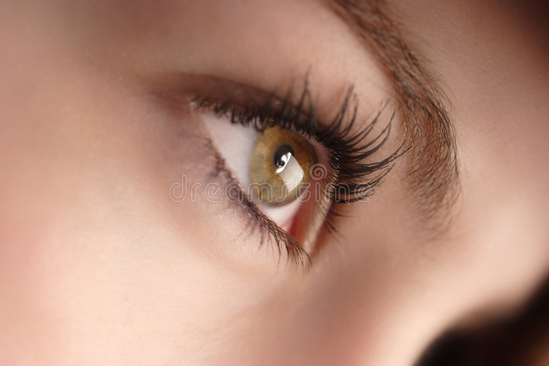 Yeux noisette photographie stock