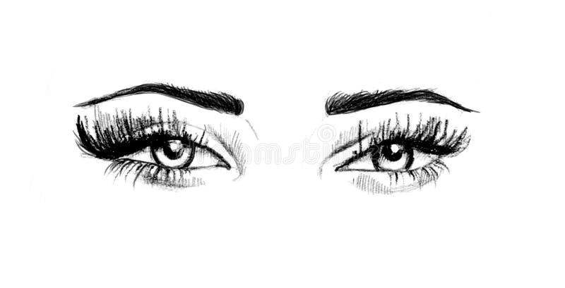 Yeux tirés par la main d'aquarelle oeil luxueux avec les sourcils parfaitement formés et les pleines mèches illustration de vecteur