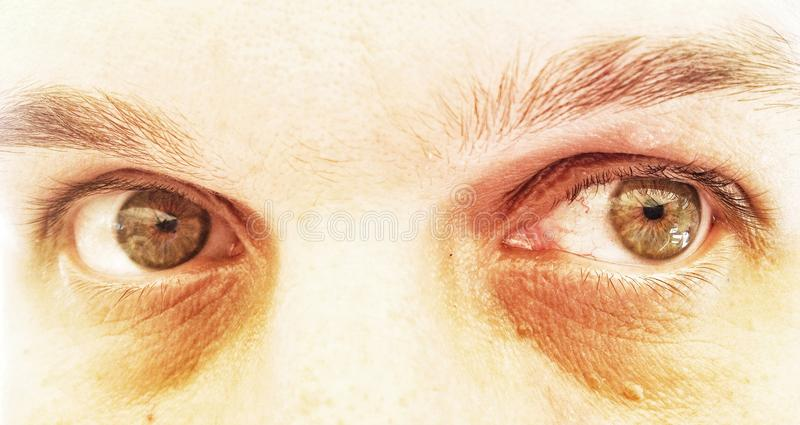Yeux verts dramatiques image stock