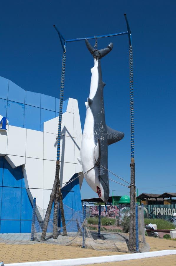 YEYSK,克拉斯诺达尔边疆区/俄罗斯- 2017年4月29日:巨人被充塞的鲨鱼 免版税库存照片