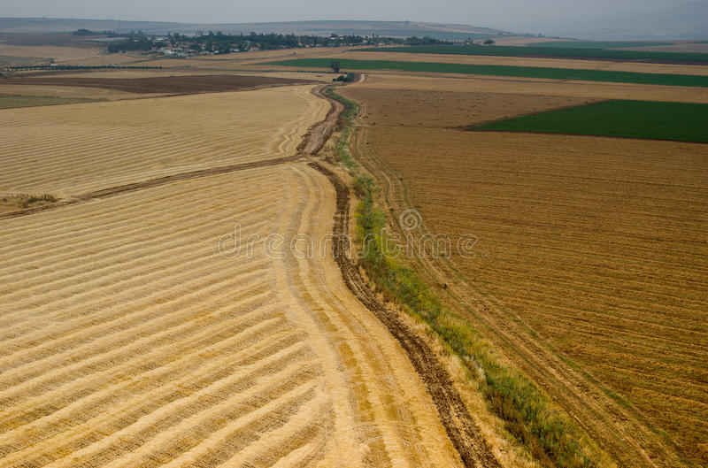 Download Yezreel Valley And Issachar Hills Stock Photo - Image: 14187308