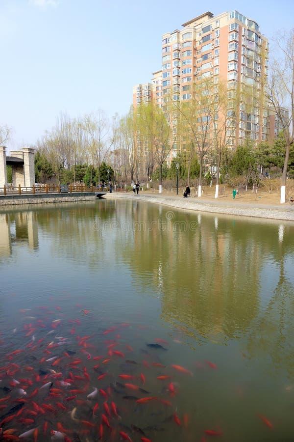 Yifen-Park stockfotografie