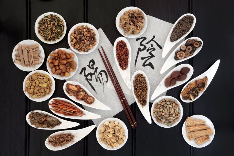 Yin e Yang Herbs imagens de stock royalty free