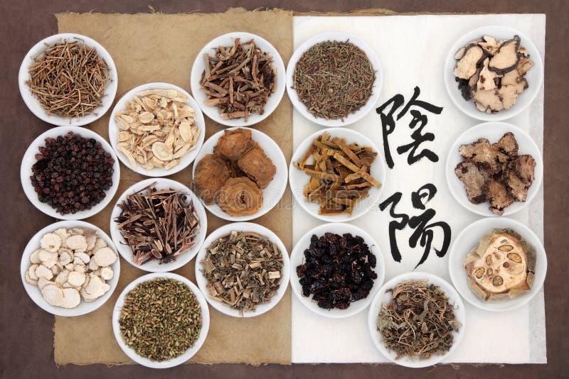 Yin e Yang Herbs imagens de stock