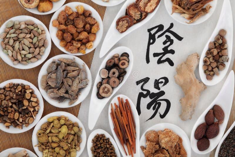 Yin i Yang Ziołowa medycyna obrazy stock