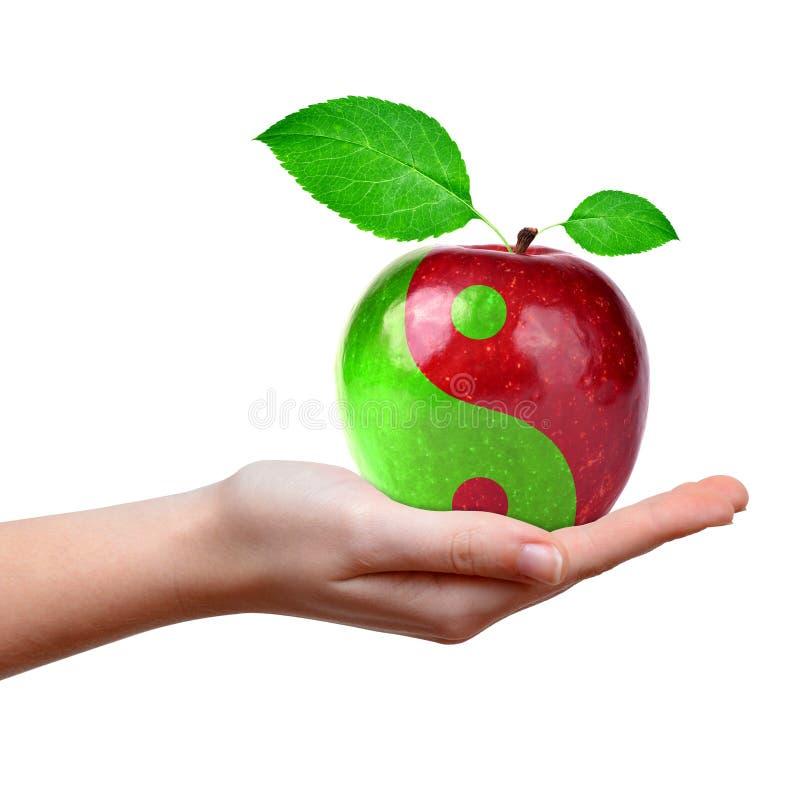 Yin Yang kolaż od jabłka zdjęcie royalty free
