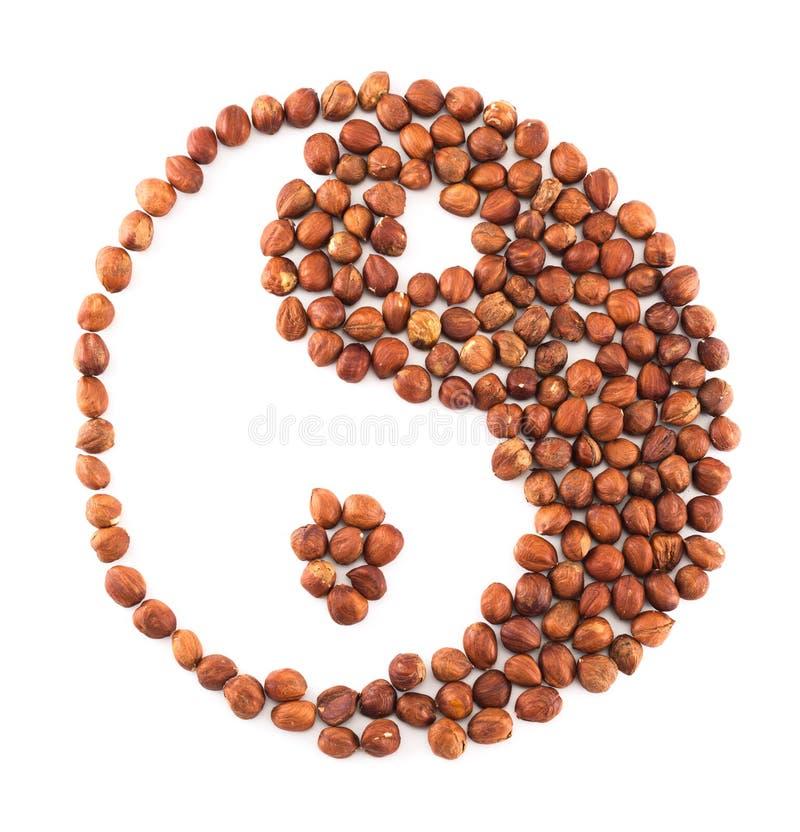Yin-yang shape made of hazelnuts isolated. Yin-yang shape composition made of hazelnuts isolated over white background stock image