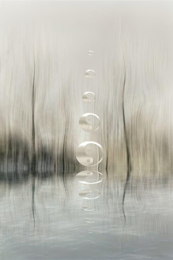 Yin-yang symbol in the forest in lake reflection. Zen, spiritual, meditayion, tao, budha, peace, relax, sikence, dark, balance, universlaw, black, white, grey stock photography