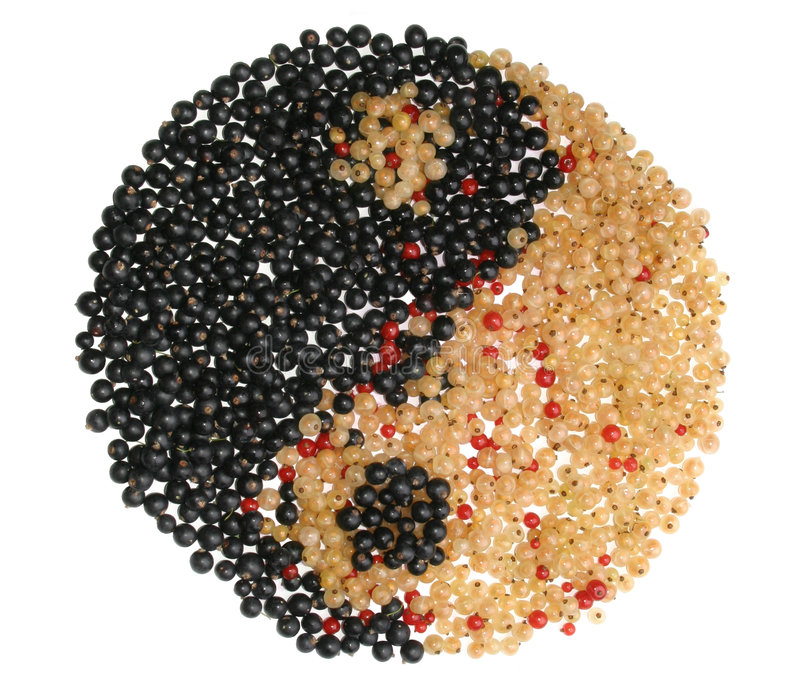Download Yin Yang Symbol Made From Different Currants Stock Photo - Image of everything, effeminate: 1012520