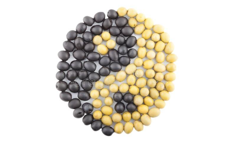 Yin-Yang symbol som göras från svart och grön oliv royaltyfria foton