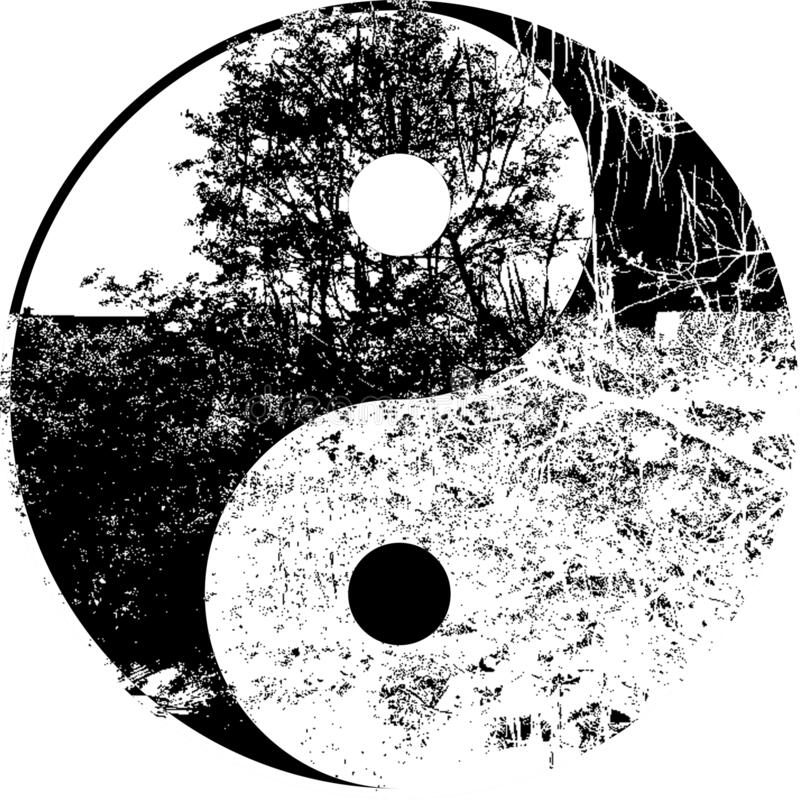 Yin yang tree in black and white stock image